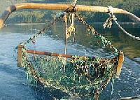 HDPE Fish Net - 06