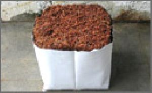 Coconut Shell Charcoal Barbeque Briquettes