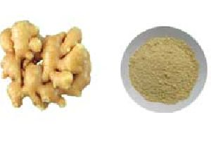 Freeze Dried Ginger Powder