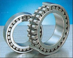 Double Row Cylindrical Roller Bearing 01