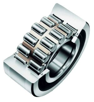 Double Row Cylindrical Roller Bearing 06
