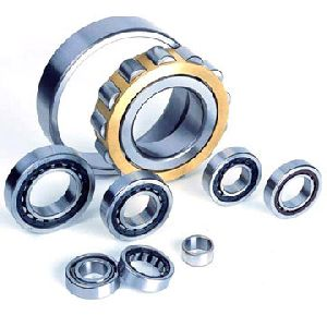 Double Row Cylindrical Roller Bearing 10