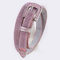 Intricate Crystal Lined Belt