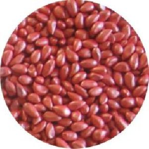 Seed Coating Polymer 01