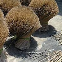 Raw Agarbatti Sticks 05
