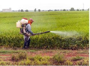 Agro Fertilizer 02