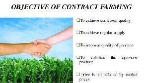 Contract Farming Services 03