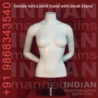 Female Torso with Small Stand