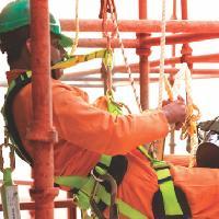 Heapro Safety Belt
