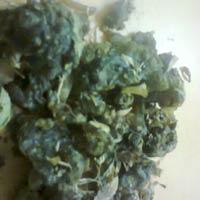 Commiphora Mukul
