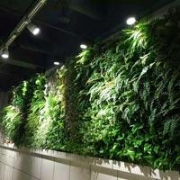 Artificial Greenwall Construction