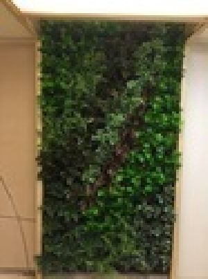 Bio Wall Artificial Vertical Green Wall