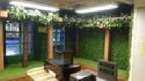 Out Door Vertical Green Wall