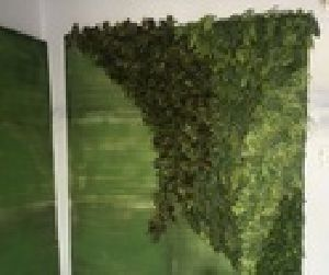 Reception Artificial Green Wall