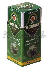 Gokhru Panchang Ras 02