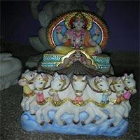 Surya Bhagwan Statue 05
