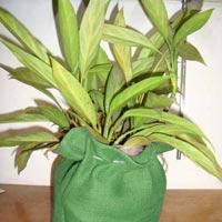Jute Drawstring Bags (LMD 12)