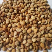 Herbal Ayurvedic Seeds