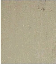 Rajpura Green Sandstone,Green Sandstone Supplier,Indian Sandstone