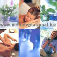 Aromatherapy Pure Essential Oils