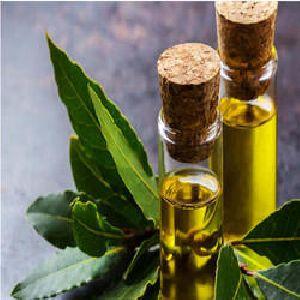Bay Leaf Oil