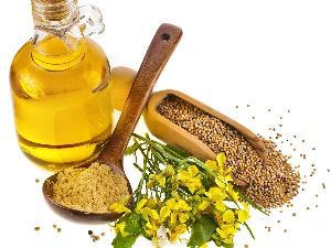 Mustard Oil 01
