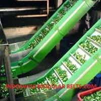 Candy Conveyor System