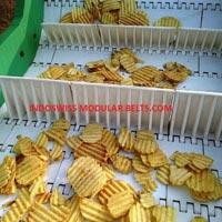 Chips & Snacks Conveyor