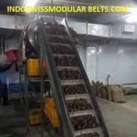 Veg Elevator Conveyors