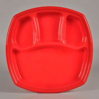 TF Shape Acrylic Dinner Plate