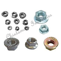 Steel Flange Nuts