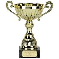 Awarding Cups