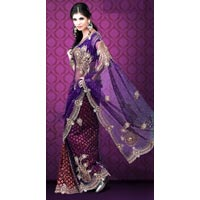 Net & Viscose Saree