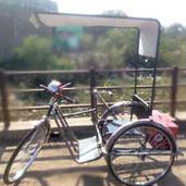 Motorized Tricycle 04