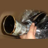 Horn and Bone Drinking Horn 02