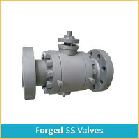 FORGED SS VALVES