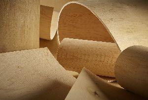 Flexible Plywood 03
