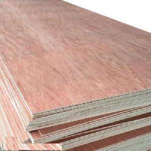 Gurjan Plywood 03