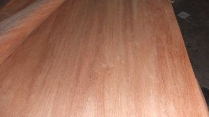 Gurjan Plywood 04