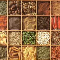 Agro Spices
