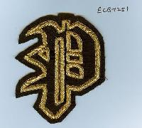 Embroidered Logo Badge (ECB-1251)