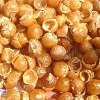 Soapnut Shells 01