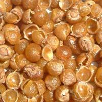 Soapnut Shells 02