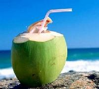 Fresh Coconut 04
