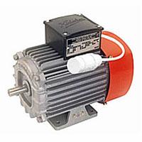 Kirloskar Asynchronous Induction Motor