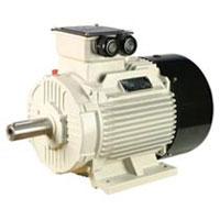 Kirloskar Three Phase Electric Motor