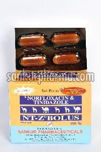 Norfloxacin + Tinidazole Bolus