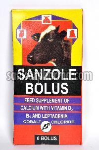Calcium Bolus