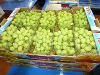 Fresh Grapes 09
