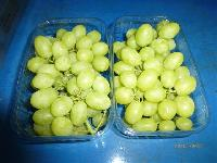 Fresh Grapes 10